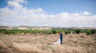 Aldinga Bay Bungalows photo tour, vines and hill backdrop