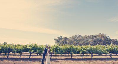 Langhorne creek winery wedding