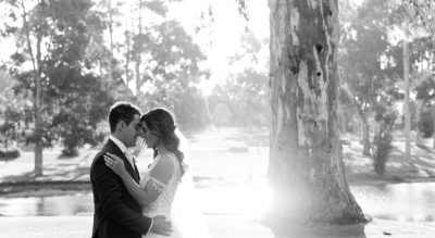 Serafino wedding photography by the lake under the big Australian gumtree