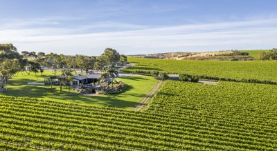 Mollydooker, McLaren Vale Wedding and Event Venue and Cellar Door offering flexible catering, marquee weddings and a modern indoor space in the heart of the Fleurieu Peninsula