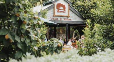 Velvet and Willow is a winery, cafe and cosy wedding venue nestled amongst lush gardens in the heart of Auburn, Clare Valley